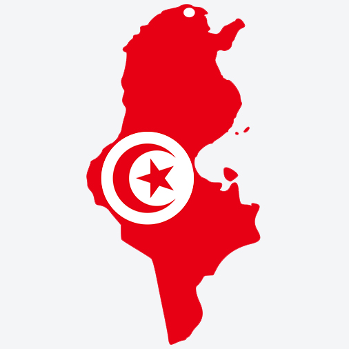 Image-Blogue-Drapeau-Tunisie-Record-Guinness-Image-Satellite-Pleiades